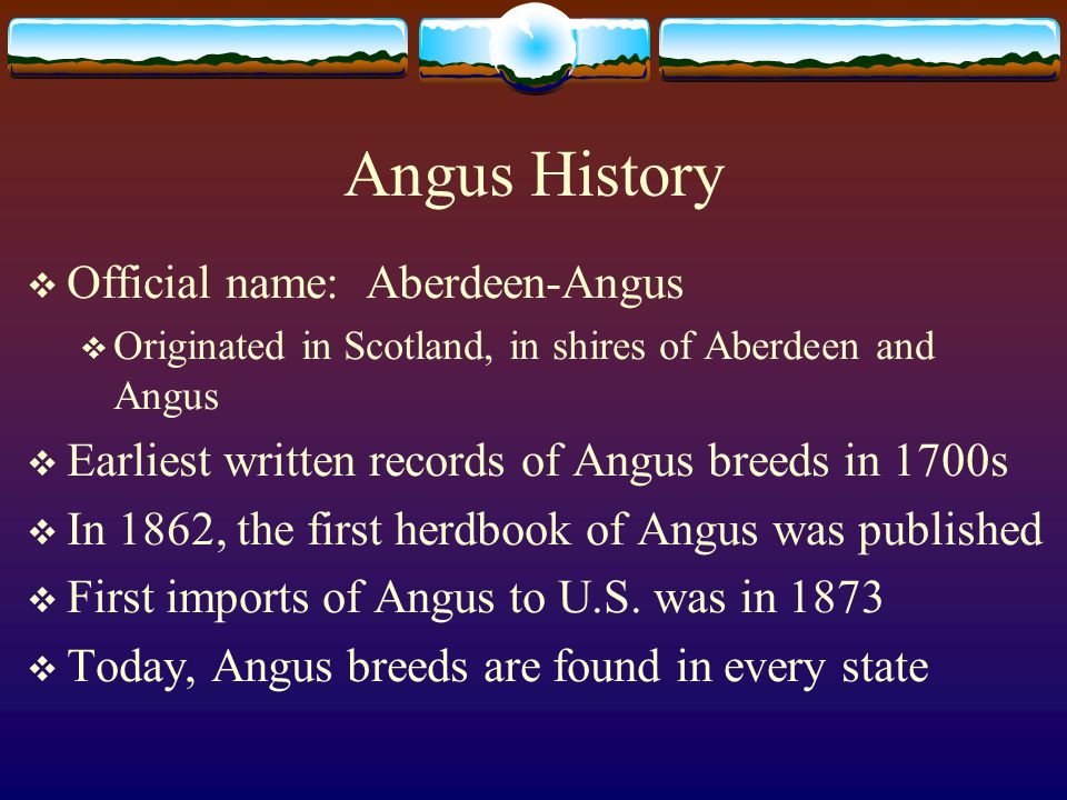 Angus History  Official name: Aberdeen-Angus  Originated in Scotland, in shires of Aberdeen and Angus  Earliest written records of Angus breeds in 1700s  In 1862, the first herdbook of Angus was published  First imports of Angus to U.S.