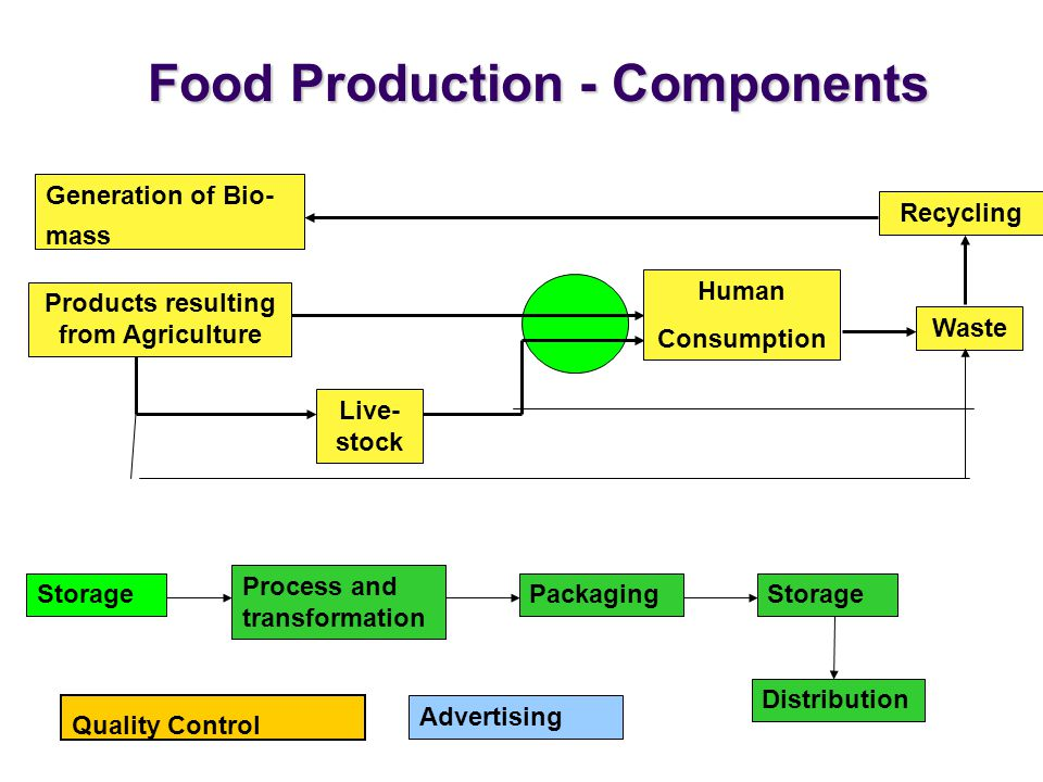 Food Production - Components Products resulting from Agriculture Live- stock Human Consumption Waste Recycling Storage Process and transformation PackagingStorage Distribution Advertising Quality Control Generation of Bio- mass