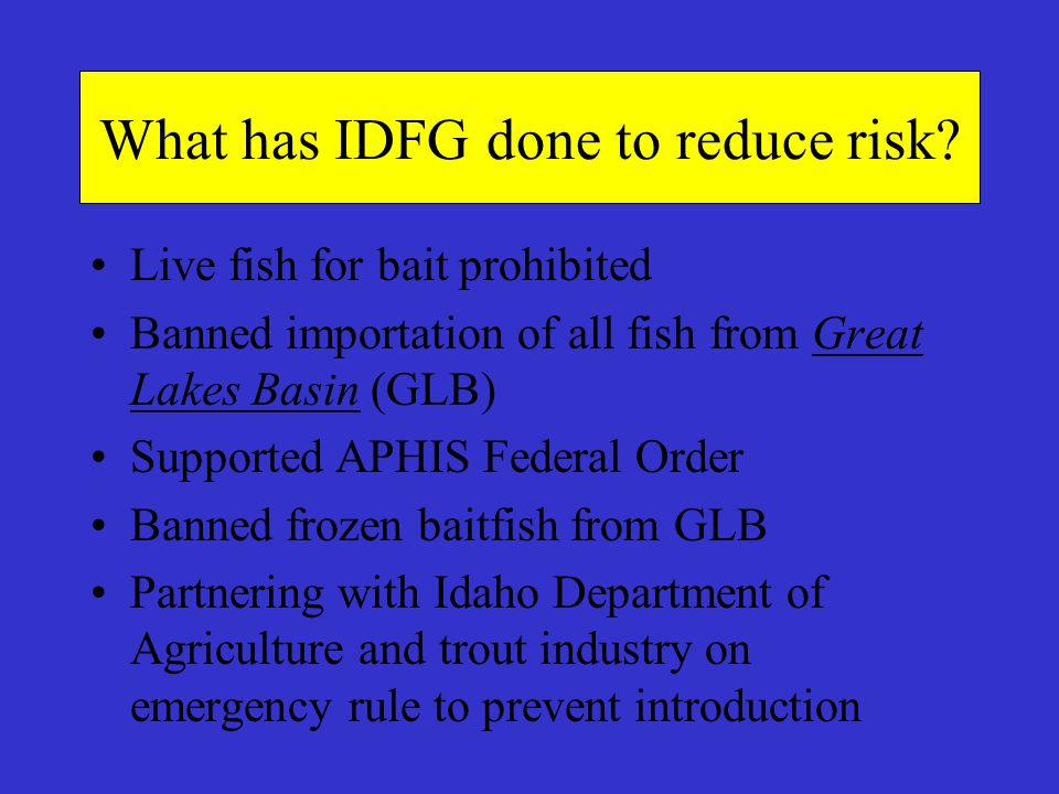 What has IDFG done to reduce risk? Live fish for bait prohibited Banned importation of all fish from Great Lakes Basin (GLB) Supported APHIS Federal O