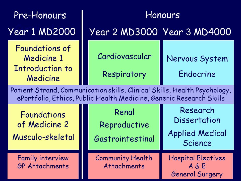 Curriculum Pre - HonoursHonours Year 1 MD2000Year 3 MD4000Year 2 MD3000 Foundations of Medicine 1 Musculo-skeleta l Cardiovascular Renal Nervous System Research Dissertation Applied Medical Science Respiratory Reproductive Gastrointestinal Endocrine Patient Strand, Communication skills, Clinical Skills, Health Psychology, ePortfolio, Ethics, Public Health Medicine, Generic Research Skills Family interview GP Attachments Hospital Electives A & E General Surgery Community Health Attachments Foundations of Medicine 2 Introduction to Medicine