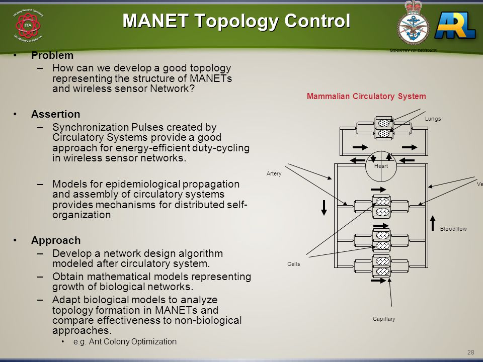 28 MANET Topology Control Problem –How can we develop a good topology representing the structure of MANETs and wireless sensor Network.