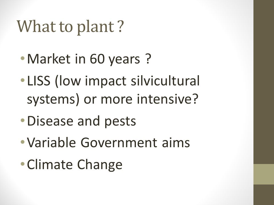 What to plant . Market in 60 years . LISS (low impact silvicultural systems) or more intensive.