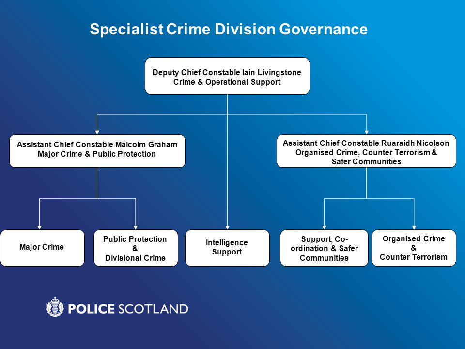 Human Trafficking – Informed Strategy Police Scotland Strategic Group Police Scotland Tactical Group Police Scotland Partners Group Anti Trafficking Progress Group National Human Trafficking Unit 14 Divisional Human Trafficking Champions