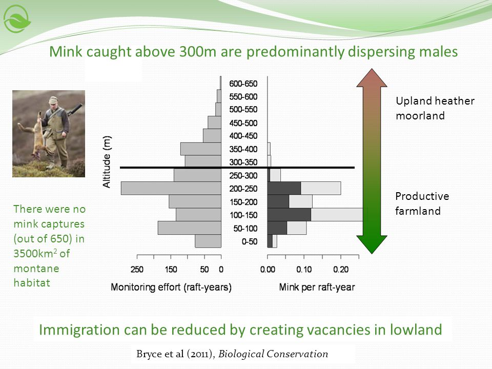 Upland heather moorland Productive farmland Immigration can be reduced by creating vacancies in lowland Bryce et al (2011), Biological Conservation Mi