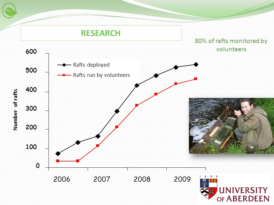 0 50 100 150 200 250 300 350 400 Number of mink Total mink captures Mink caught by volunteers 20062007200820092010 70% of mink were caught and dispatched by volunteers RESEARCH The analysis of mink capture rate indicated that the level of mink activity within a focal sub- catchment was affected by the intensity of mink control and decline of mink numbers in the rest of the catchment