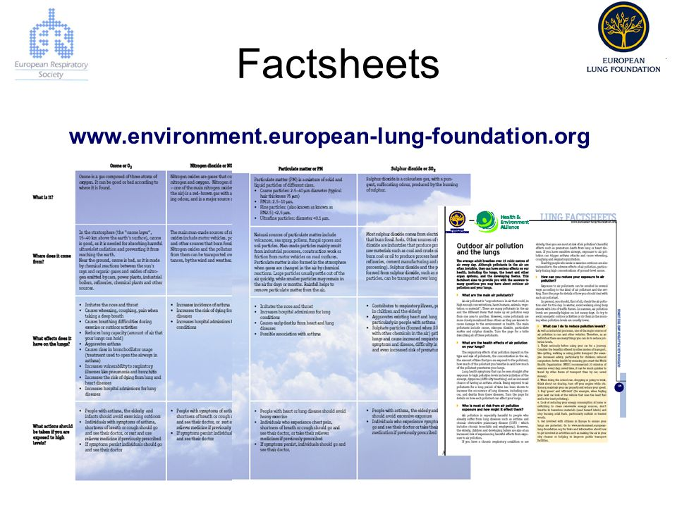 Factsheets www.environment.european-lung-foundation.org