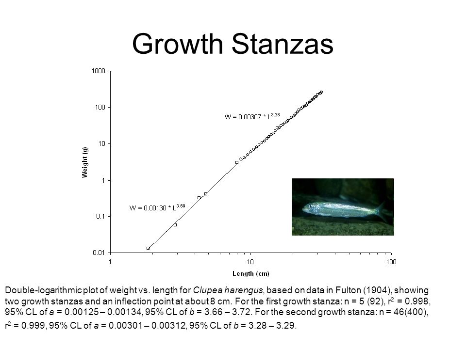Growth Stanzas Double-logarithmic plot of weight vs.