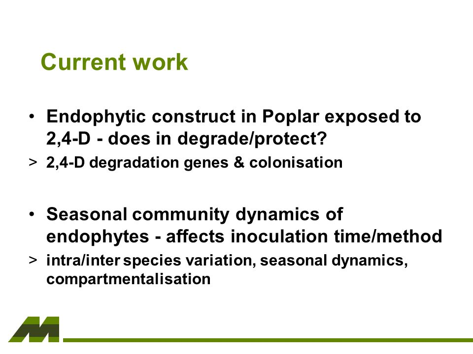 Current work Endophytic construct in Poplar exposed to 2,4-D - does in degrade/protect.