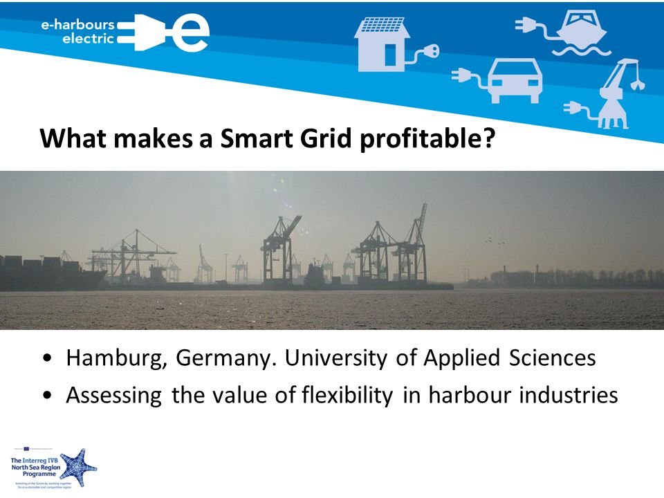 What makes a Smart Grid profitable. Hamburg, Germany.