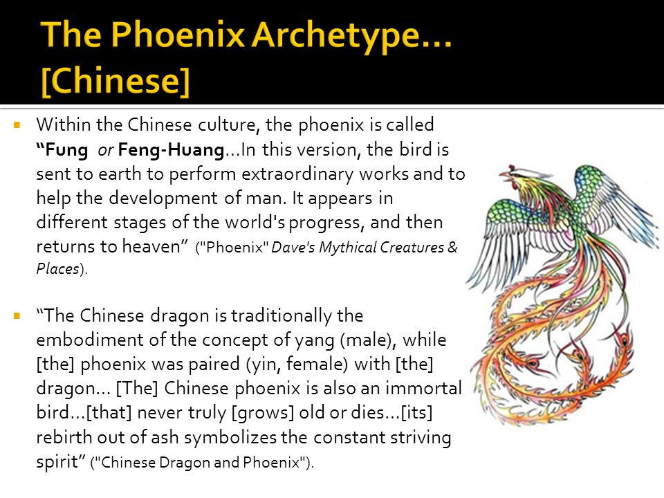  Within the Chinese culture, the phoenix is called Fung or Feng-Huang…In this version, the bird is sent to earth to perform extraordinary works and to help the development of man.