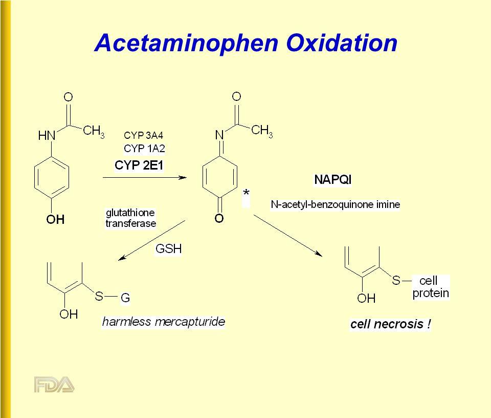 Acetaminophen Oxidation CYP 3A4