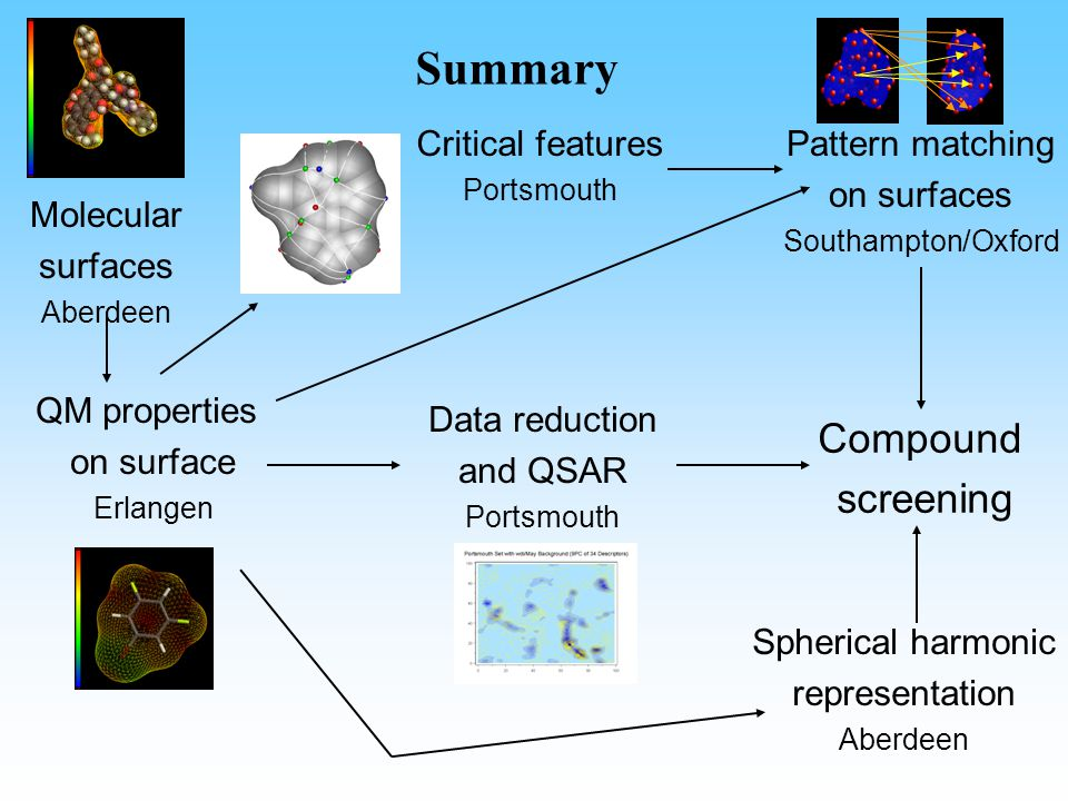 Summary Molecular surfaces Aberdeen QM properties on surface Erlangen Compound screening Pattern matching on surfaces Southampton/Oxford Critical features Portsmouth Data reduction and QSAR Portsmouth Spherical harmonic representation Aberdeen