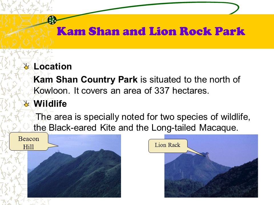 Kam Shan and Lion Rock Park Location Kam Shan Country Park is situated to the north of Kowloon.