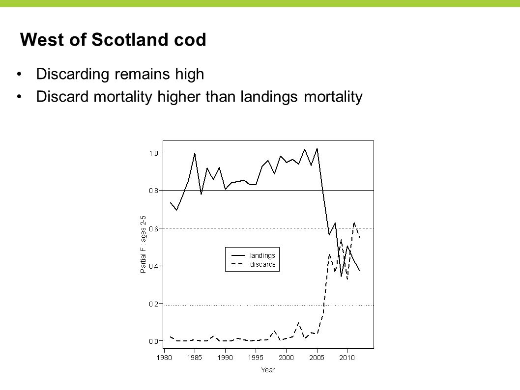 West of Scotland cod Discarding remains high Discard mortality higher than landings mortality