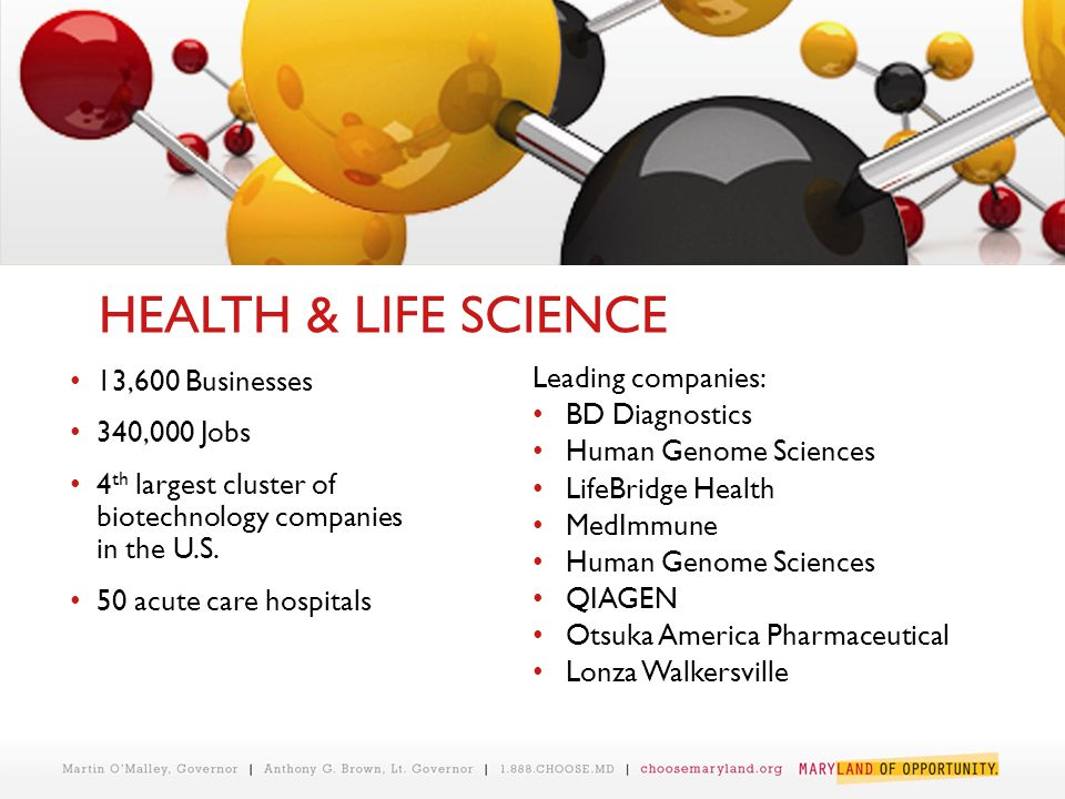 Leading companies: BD Diagnostics Human Genome Sciences LifeBridge Health MedImmune Human Genome Sciences QIAGEN Otsuka America Pharmaceutical Lonza Walkersville 13,600 Businesses 340,000 Jobs 4 th largest cluster of biotechnology companies in the U.S.
