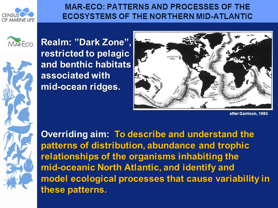 MAR-ECO: PATTERNS AND PROCESSES OF THE ECOSYSTEMS OF THE NORTHERN MID-ATLANTIC Overriding aim: To describe and understand the patterns of distribution, abundance and trophic relationships of the organisms inhabiting the mid-oceanic North Atlantic, and identify and model ecological processes that cause variability in these patterns.
