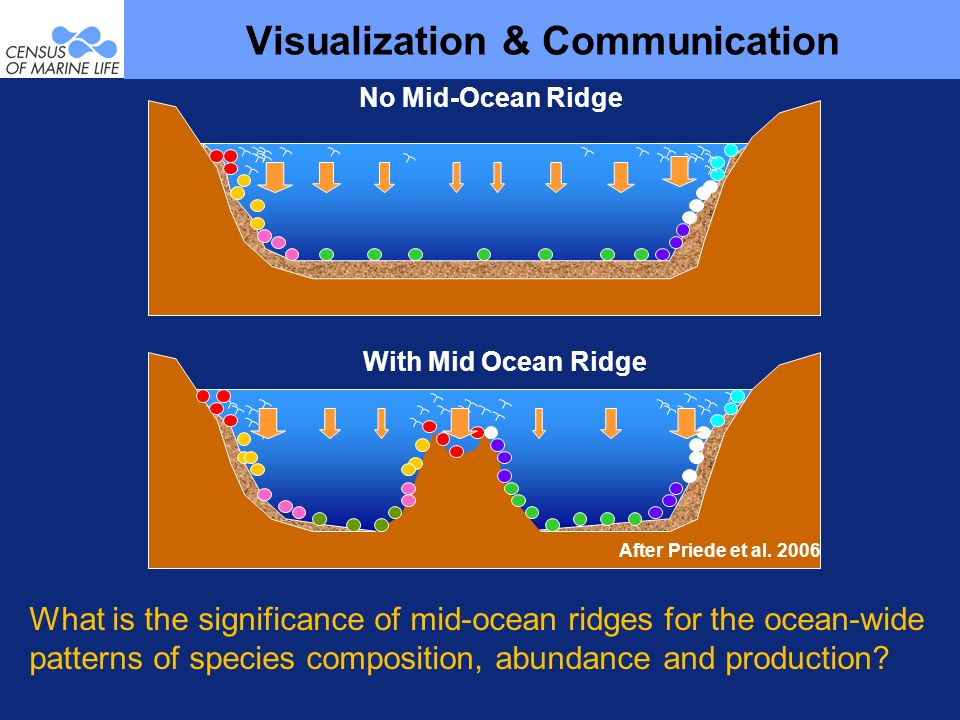 Visualization & Communication After Priede et al.