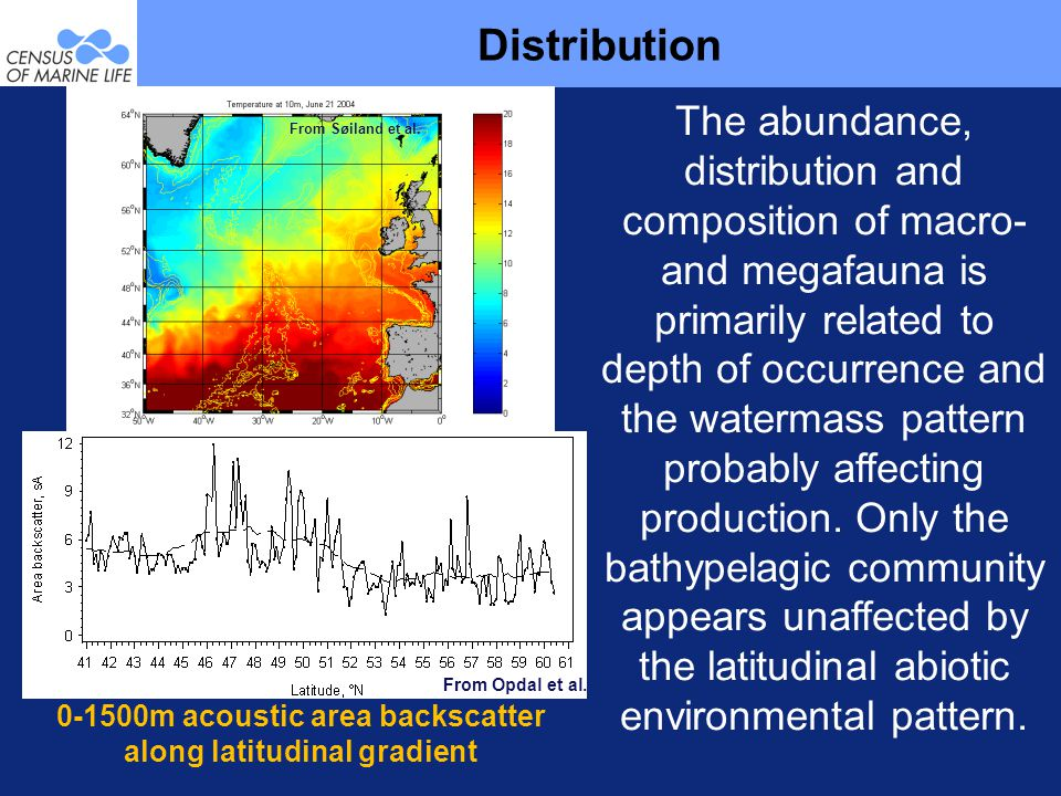 Distribution The abundance, distribution and composition of macro- and megafauna is primarily related to depth of occurrence and the watermass pattern probably affecting production.