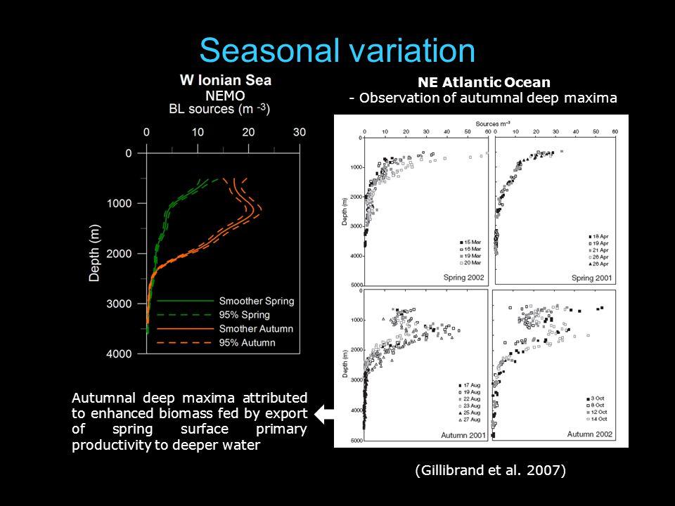 Seasonal variation NEMO NE Atlantic Ocean - Observation of autumnal deep maxima (Gillibrand et al.