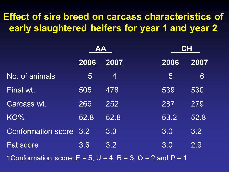 AA CH 2006200720062007 No. of animals5456 Final wt.505478539530 Carcass wt.266252287279 KO%52.852.853.252.8 Conformation score3.23.03.03.2 Fat score3.