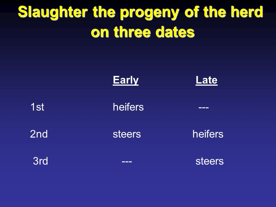 EarlyLate 1st heifers --- 2nd steers heifers 3rd ---steers Slaughter the progeny of the herd on three dates