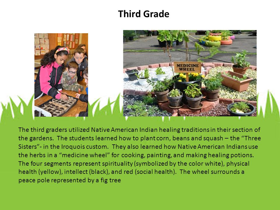 Third Grade The third graders utilized Native American Indian healing traditions in their section of the gardens.