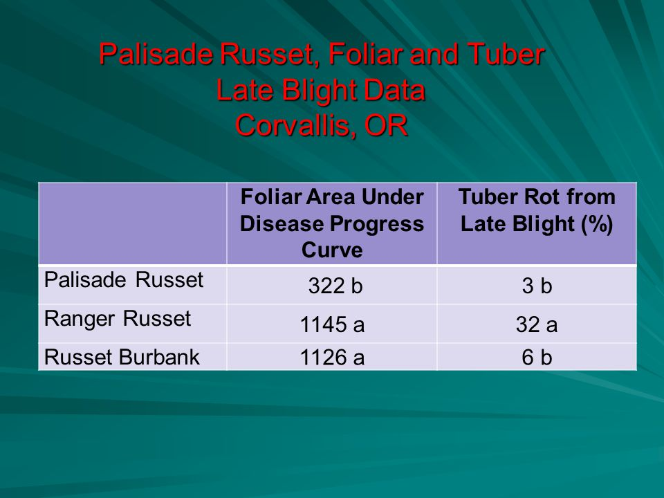Palisade Russet, Foliar and Tuber Late Blight Data Corvallis, OR Foliar Area Under Disease Progress Curve Tuber Rot from Late Blight (%) Palisade Russet 322 b3 b3 b Ranger Russet 1145 a32 a Russet Burbank 1126 a6 b6 b