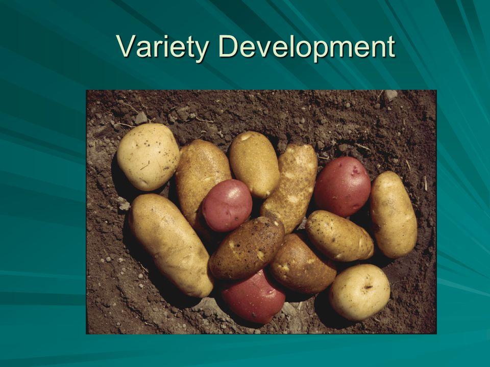 Variety Development