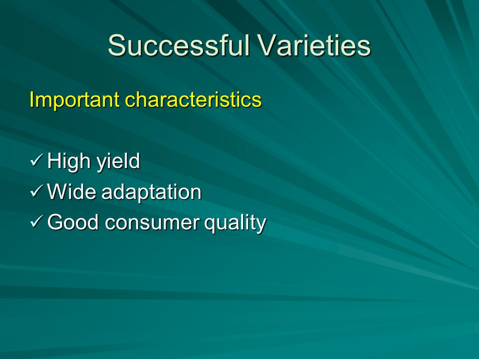 Successful Varieties Important characteristics High yield High yield Wide adaptation Wide adaptation Good consumer quality Good consumer quality