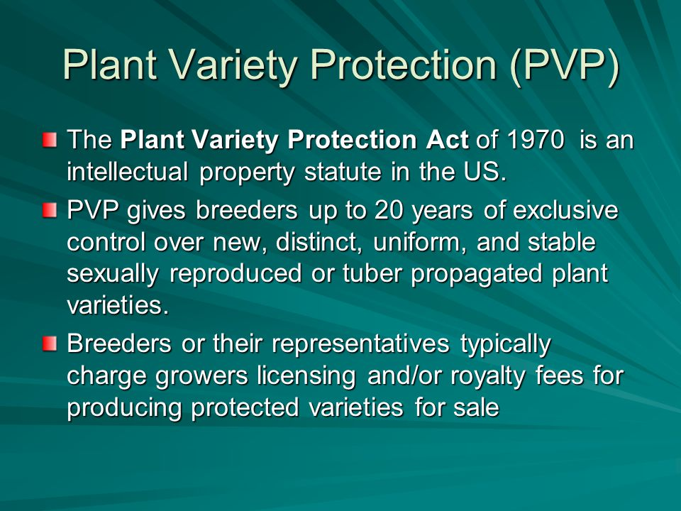 Plant Variety Protection (PVP) The Plant Variety Protection Act of 1970 is an intellectual property statute in the US.