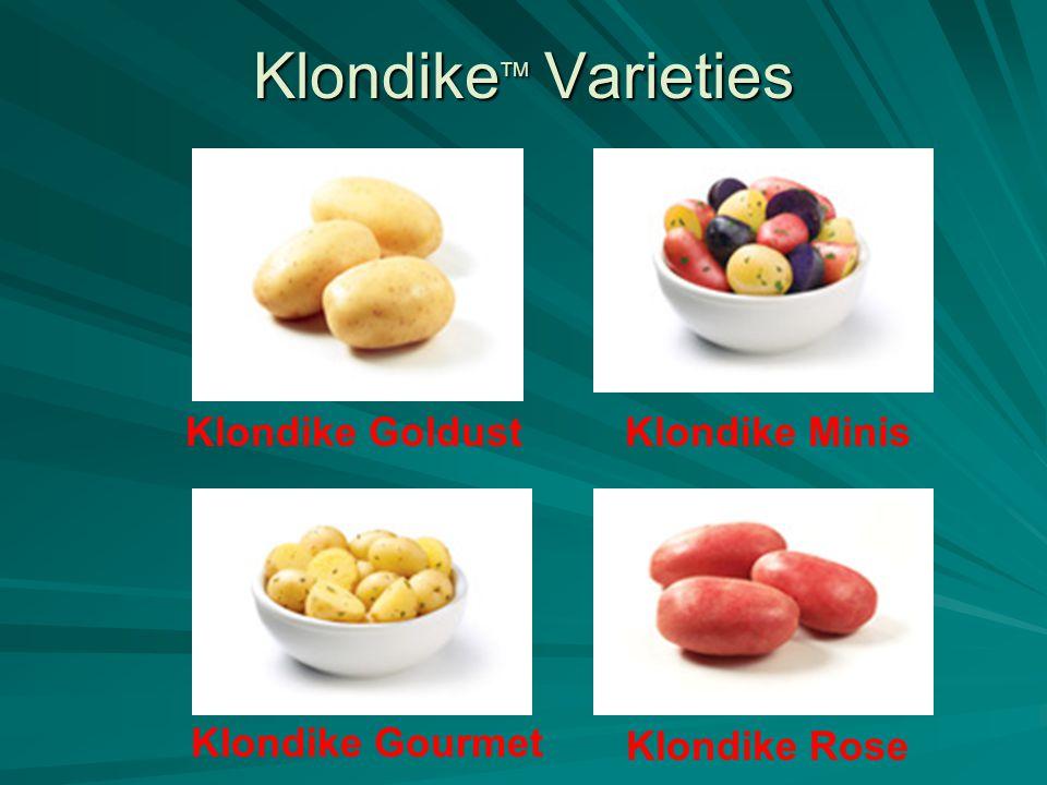 Klondike TM Varieties Klondike Gourmet Klondike GoldustKlondike Minis Klondike Rose