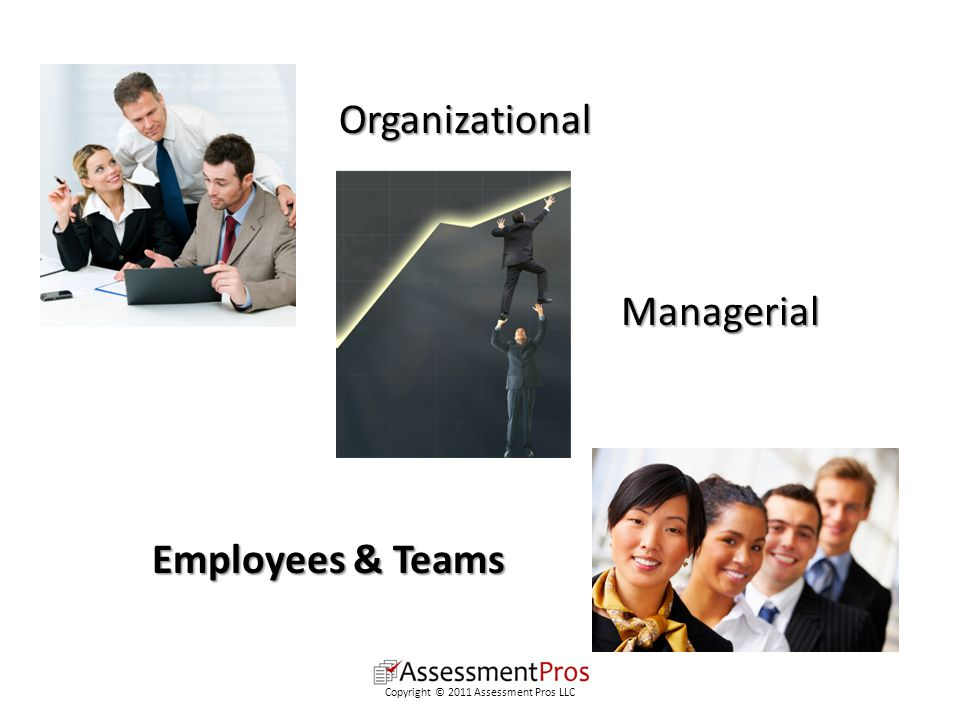 Employees & Teams Managerial Organizational Copyright © 2011 Assessment Pros LLC