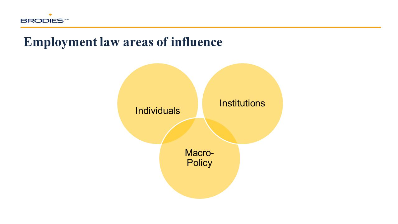 Employment law areas of influence