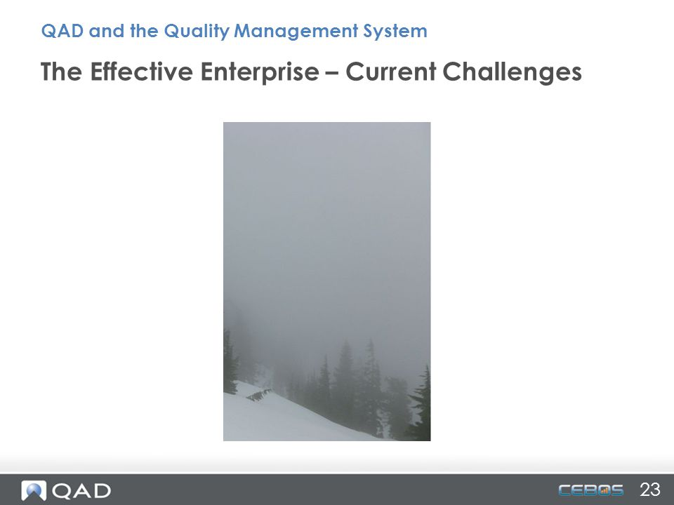 23 The Effective Enterprise – Current Challenges QAD and the Quality Management System