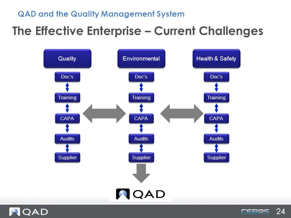 The Effective Enterprise – Current Challenges Quality Environmental Health & Safety Doc's Training CAPA Audits Supplier Doc's Training CAPA Audits Sup
