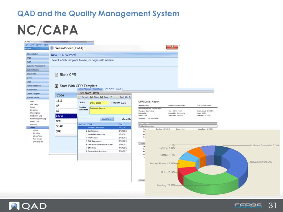 NC/CAPA 31 QAD and the Quality Management System