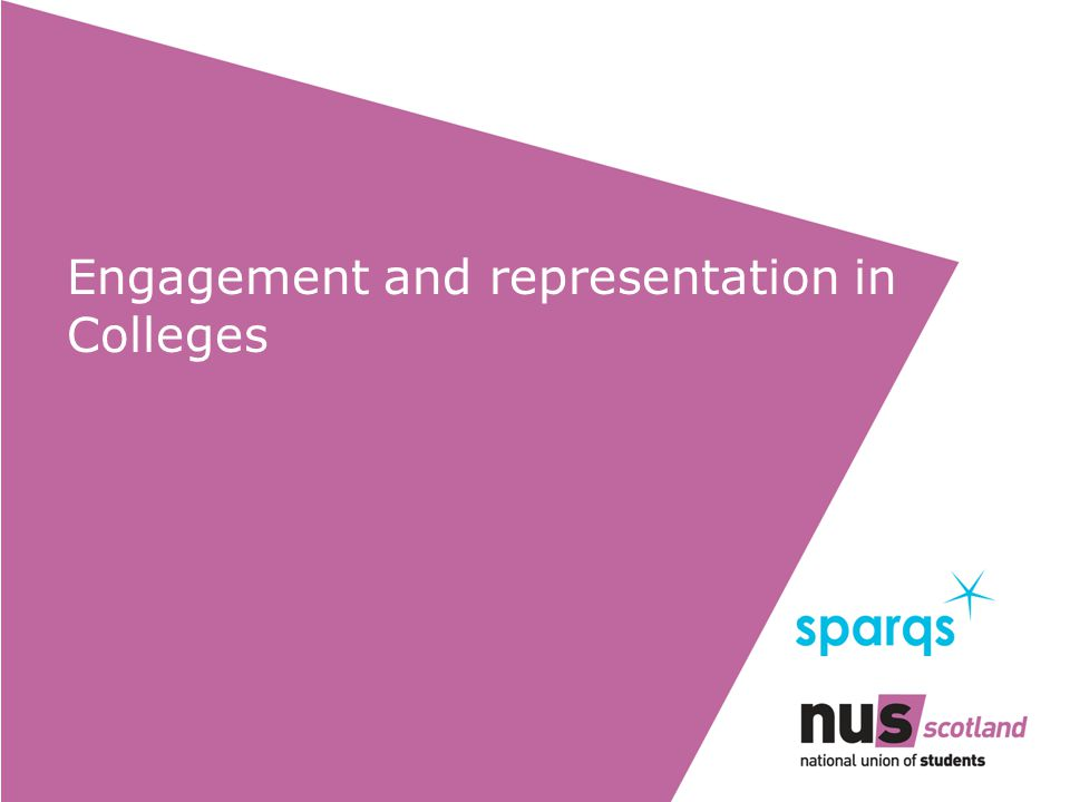 Engagement and representation in Colleges