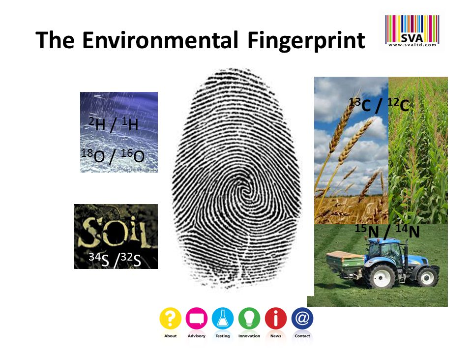 The Environmental Fingerprint 2 H / 1 H 13 C / 12 C 34 S / 32 S 15 N / 14 N 18 O / 16 O