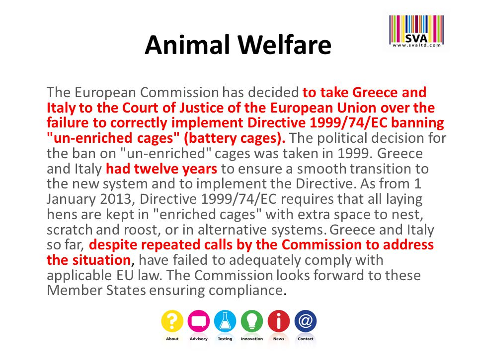 Animal Welfare The European Commission has decided to take Greece and Italy to the Court of Justice of the European Union over the failure to correctly implement Directive 1999/74/EC banning un-enriched cages (battery cages).