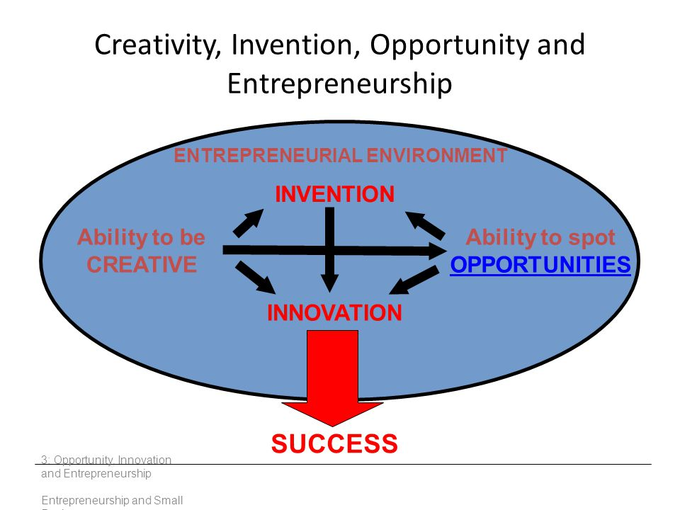 Creativity, Invention, Opportunity and Entrepreneurship 3: Opportunity, Innovation and Entrepreneurship Entrepreneurship and Small Business Ability to