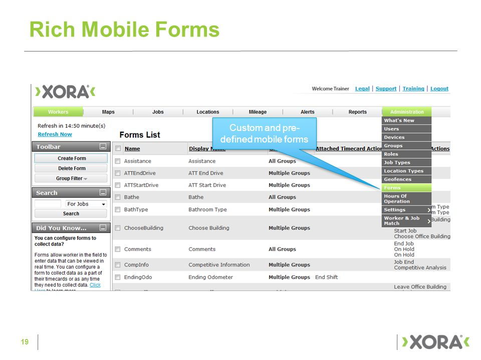 Rich Mobile Forms Custom and pre- defined mobile forms 19