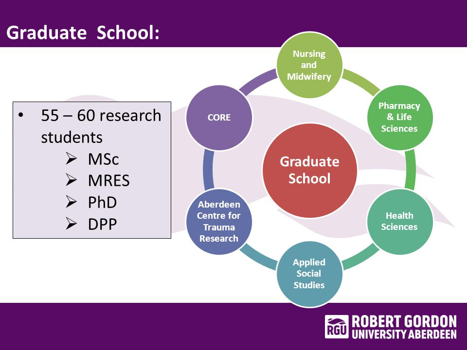 Summary : Doctorate of Professional Practice (DPP) Development and implementation Challenges faced Tension between theory and practice Current status and future development