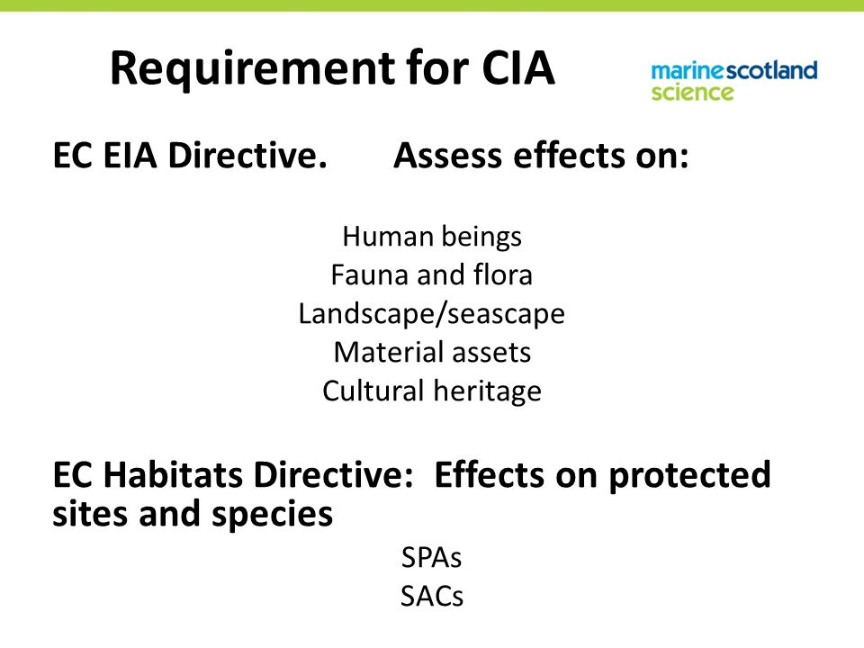 EC EIA Directive. Assess effects on: Human beings Fauna and flora Landscape/seascape Material assets Cultural heritage EC Habitats Directive: Effects