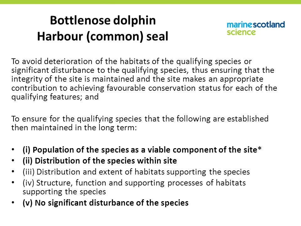 Assessment framework Moray Firth developers worked with University of Aberdeen to develop framework for assessing effects of pile driving to harbour seal populations Got regulatory and SNCB buy in early in the process Generic enough to allow use for other species in other areas Draws on available data and supplements with expert opinion where data not available