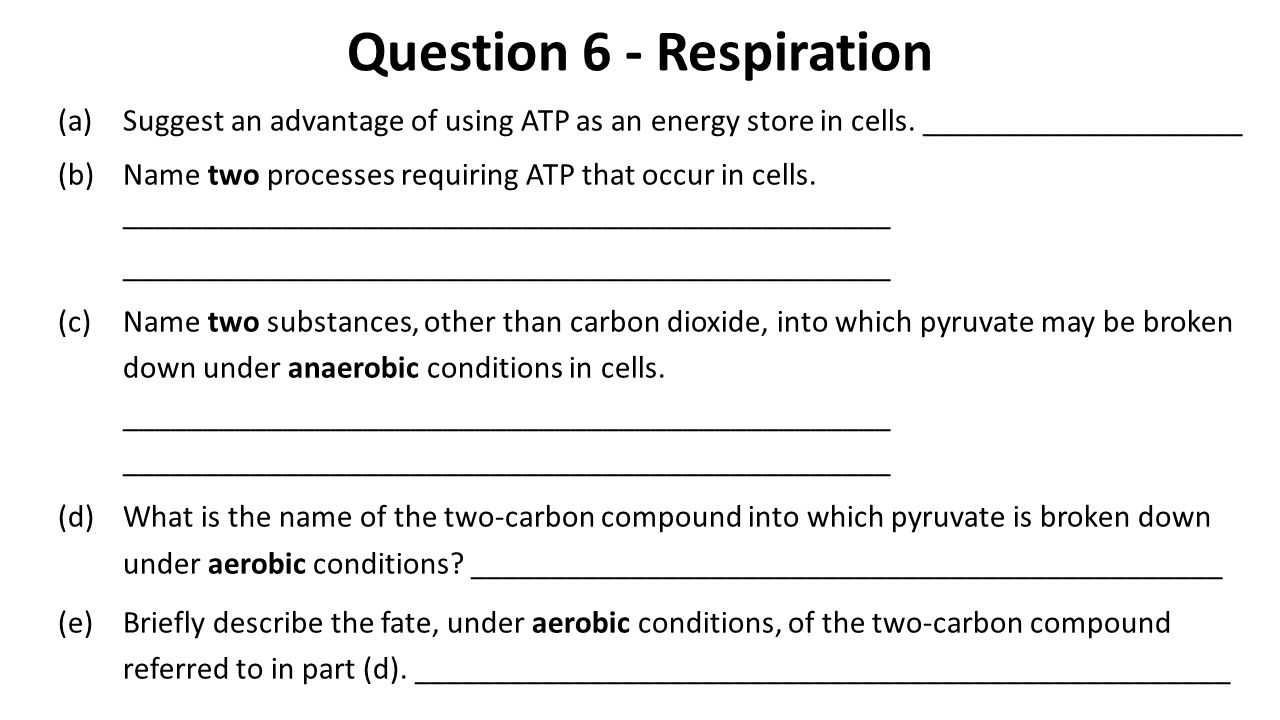 Question 6 - Respiration (a)Suggest an advantage of using ATP as an energy store in cells. ____________________ (b)Name two processes requiring ATP th