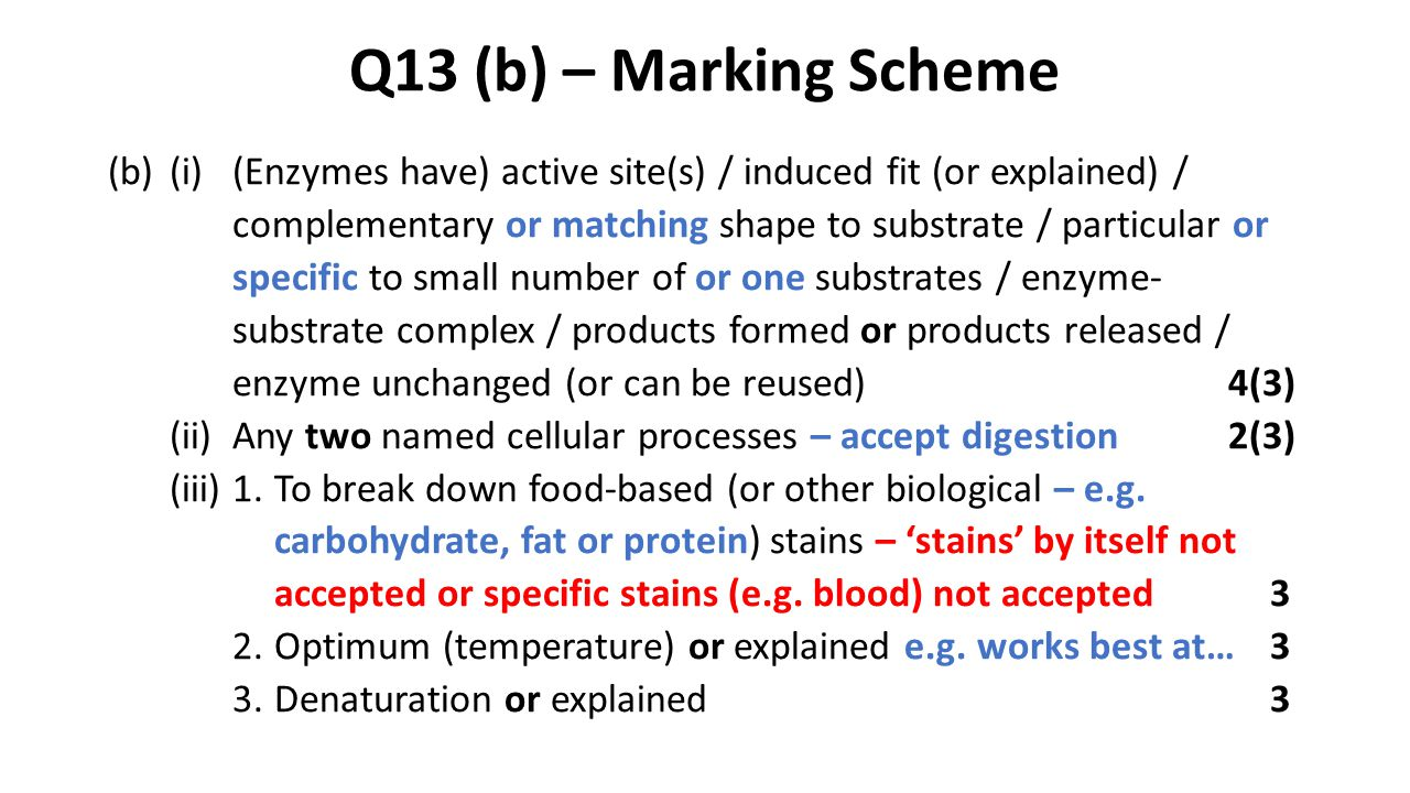 Q13 (b) – Marking Scheme (b)(i)(Enzymes have) active site(s) / induced fit (or explained) / complementary or matching shape to substrate / particular