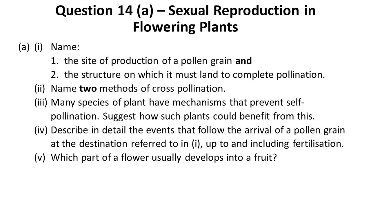Question 14 (a) – Sexual Reproduction in Flowering Plants (a)(i)Name: 1.the site of production of a pollen grain and 2.the structure on which it must