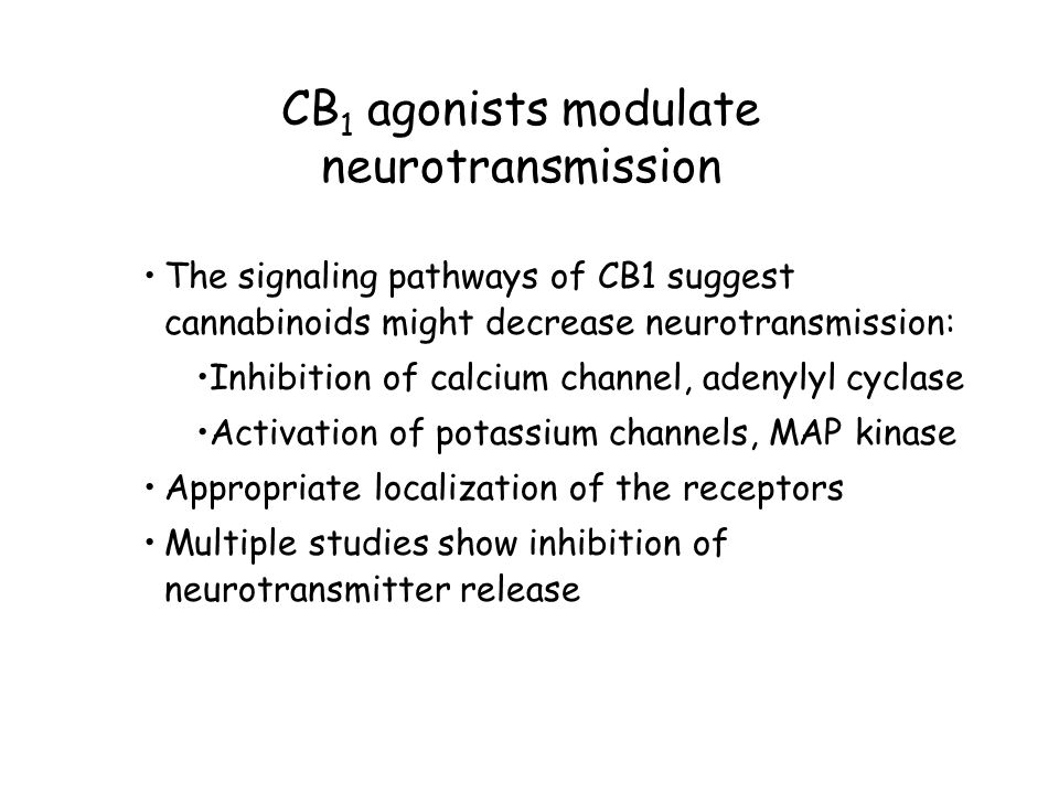 CB 1 agonists modulate neurotransmission The signaling pathways of CB1 suggest cannabinoids might decrease neurotransmission: Inhibition of calcium channel, adenylyl cyclase Activation of potassium channels, MAP kinase Appropriate localization of the receptors Multiple studies show inhibition of neurotransmitter release