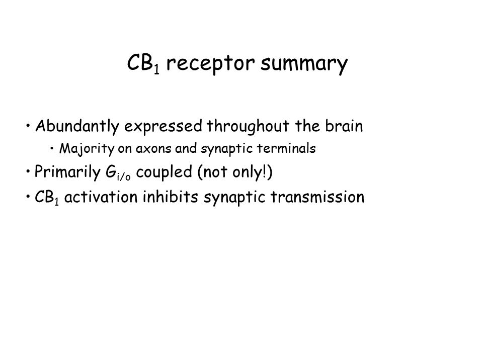 CB 1 receptor summary Abundantly expressed throughout the brain Majority on axons and synaptic terminals Primarily G i/o coupled (not only!) CB 1 activation inhibits synaptic transmission
