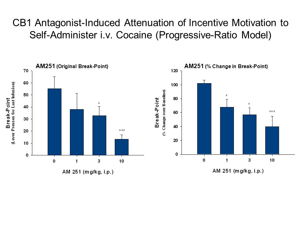 CB1 Antagonist-Induced Attenuation of Incentive Motivation to Self-Administer i.v.